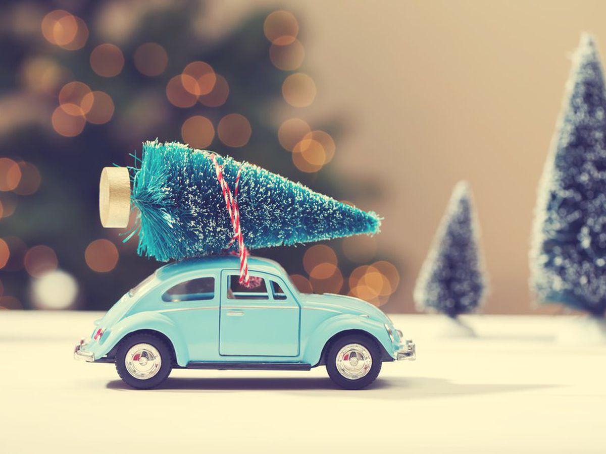 Albero Di Natale 8 Dicembre.Perche Si Fa L Albero Di Natale E Quando Perche E Un Abete Studentville