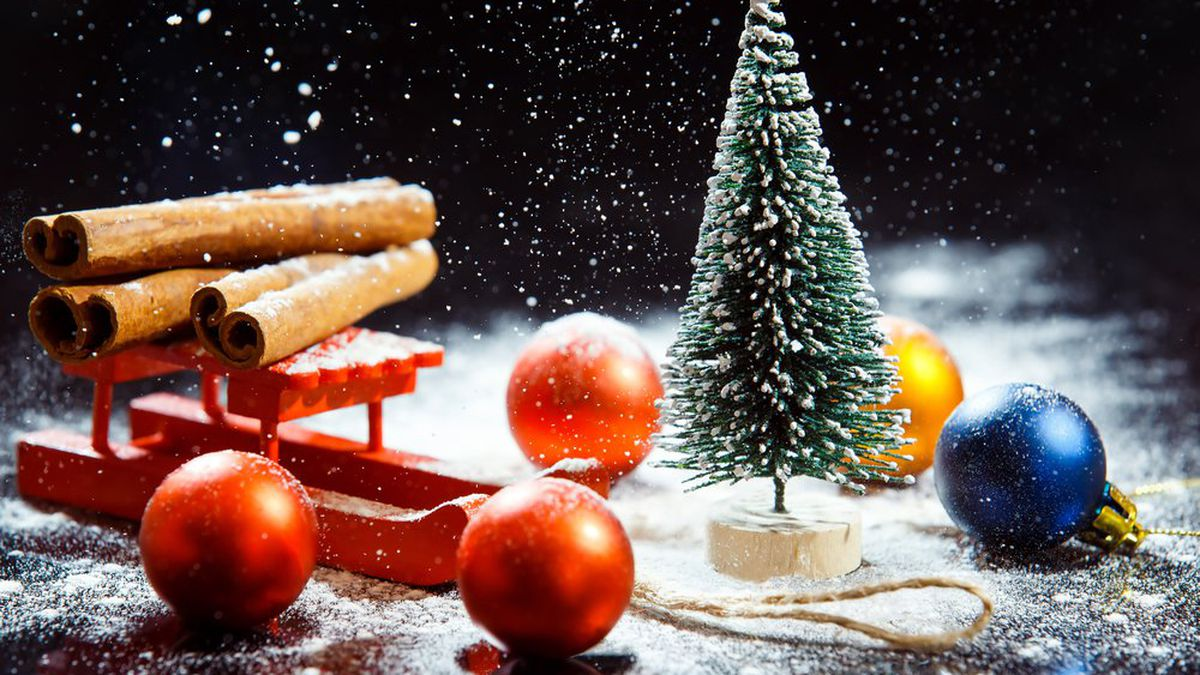 Albero Di Natale Origini.Significato Albero Di Natale Tradizione Origine E Simbolo Studentville