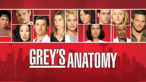 grey's anatomy 4 serie tv