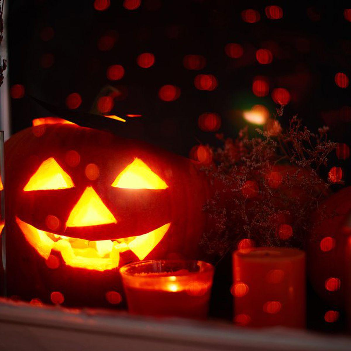 Ricerca Halloween In Inglese.Zucca Di Halloween Origini Storia E Tradizioni Studentville