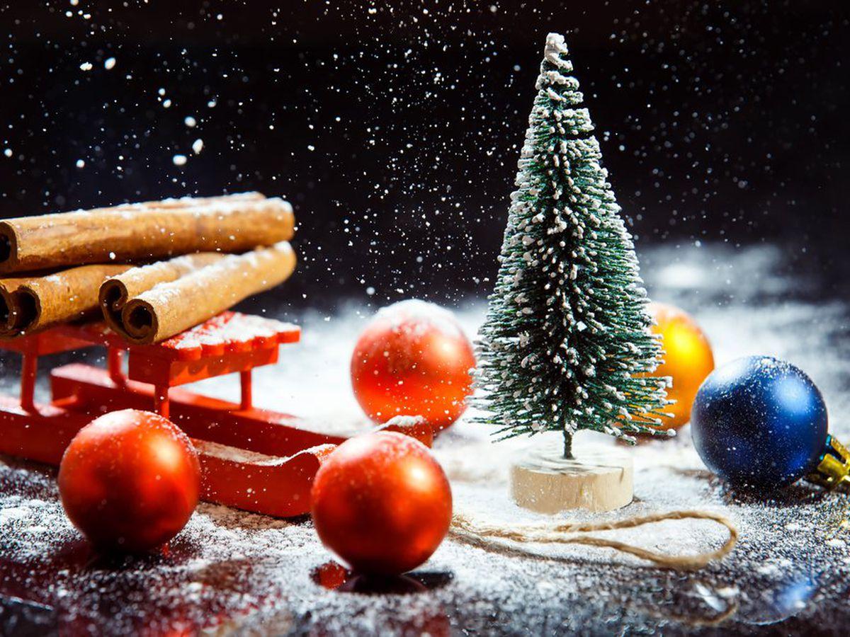 Albero Di Natale Pagano.Significato Albero Di Natale Tradizione Origine E Simbolo Studentville